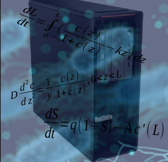 biofilm-math